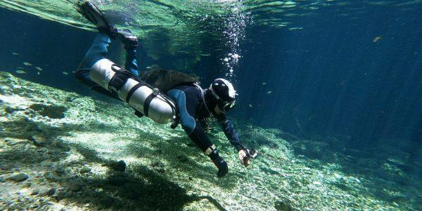 Buceo Cenote